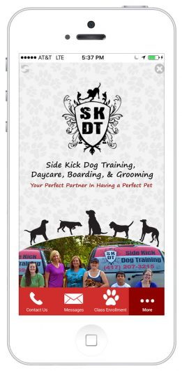 http://Springfield%20Side%20Kick%20Dog%20Training