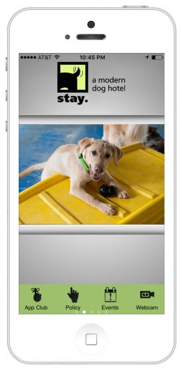 http://stay.%20a%20modern%20dog%20hotel
